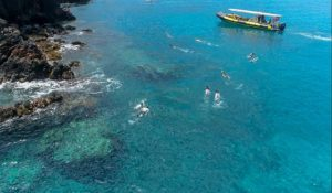 Arial shot of snorkelers in the water